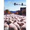 Wild Fibers Magazine - Winter12