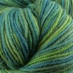 Cascade Yarns 220 Superwash Paints - 9770