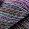 Cascade Yarns 220 Superwash Paints - 9879