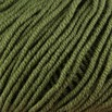 Valley Yarns Northfield - Avocado