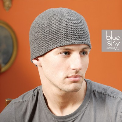 Blue Sky Alpacas Mens Beanie at WEBS Yarn.com
