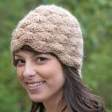 Cascade Yarns W392 Shelly Hat (Free)