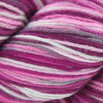 Cascade Yarns Heritage Paints - 9901