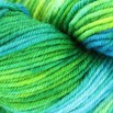 Baah Yarns Shasta - Braziliane