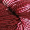 Plymouth Yarn Select Worsted Merino Superwash Kettle Dyed - 1016